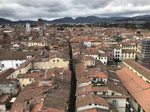 Torre Guinigi, Lucca, Italy.